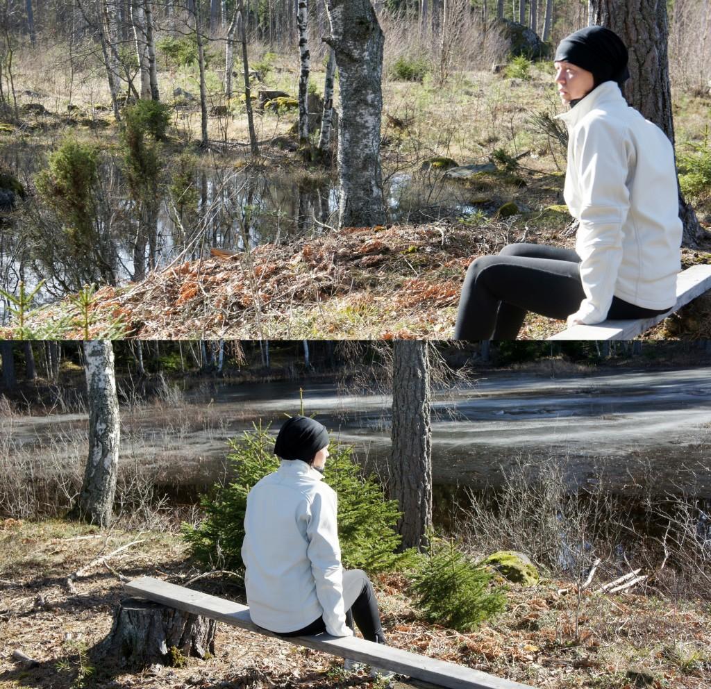 Kontemplation vid skogssjön