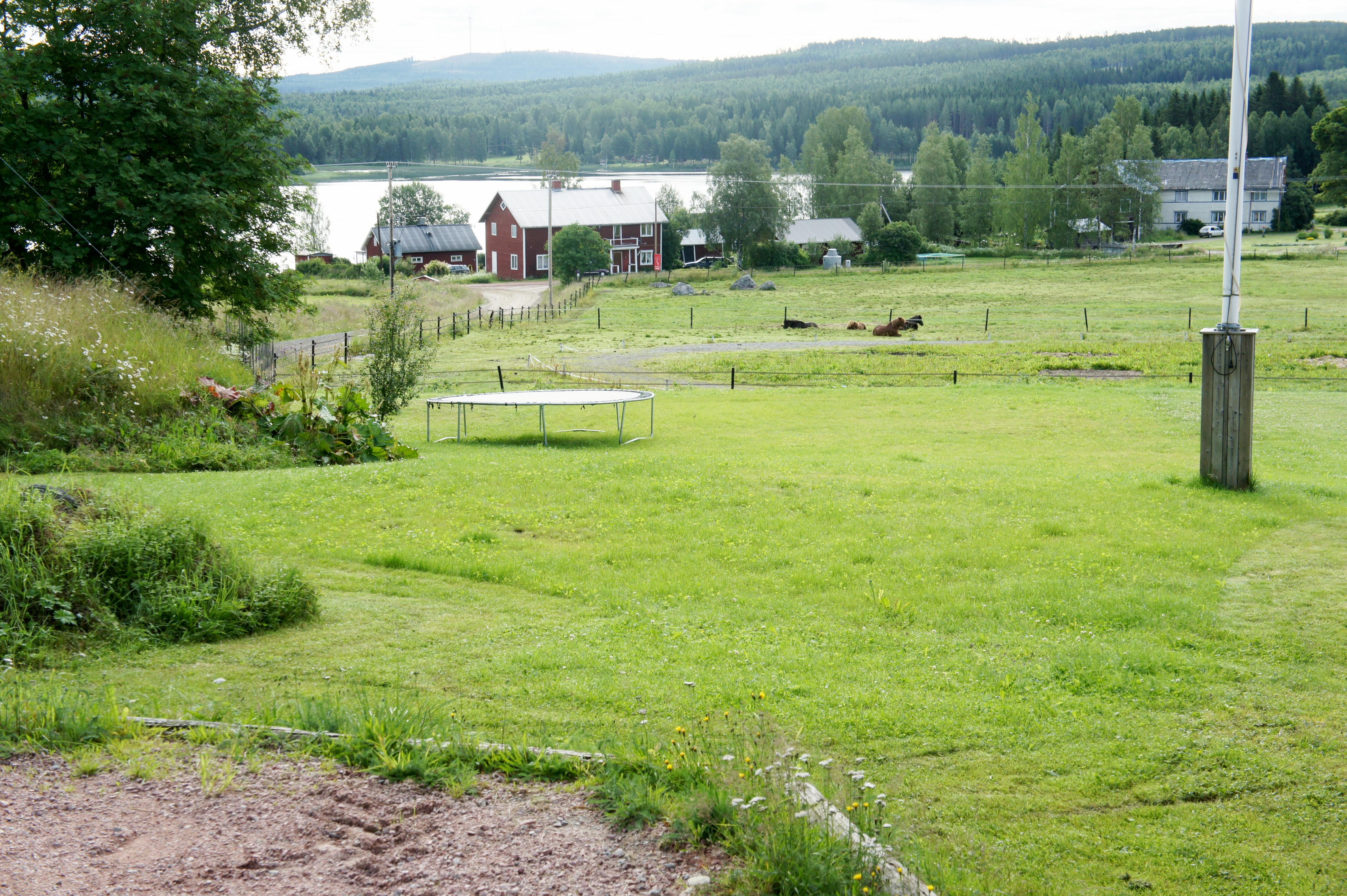 Utsikt från en hästgård i Hälsingland