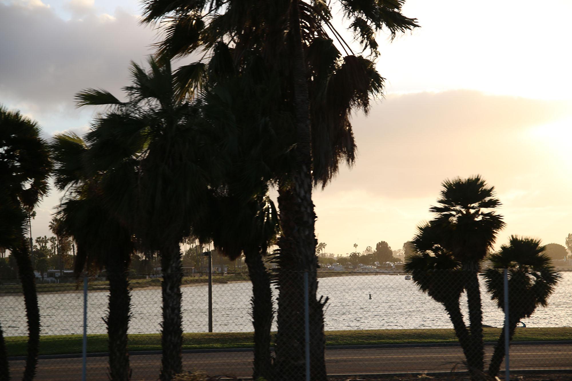 IMG_2221 san diego beachen x