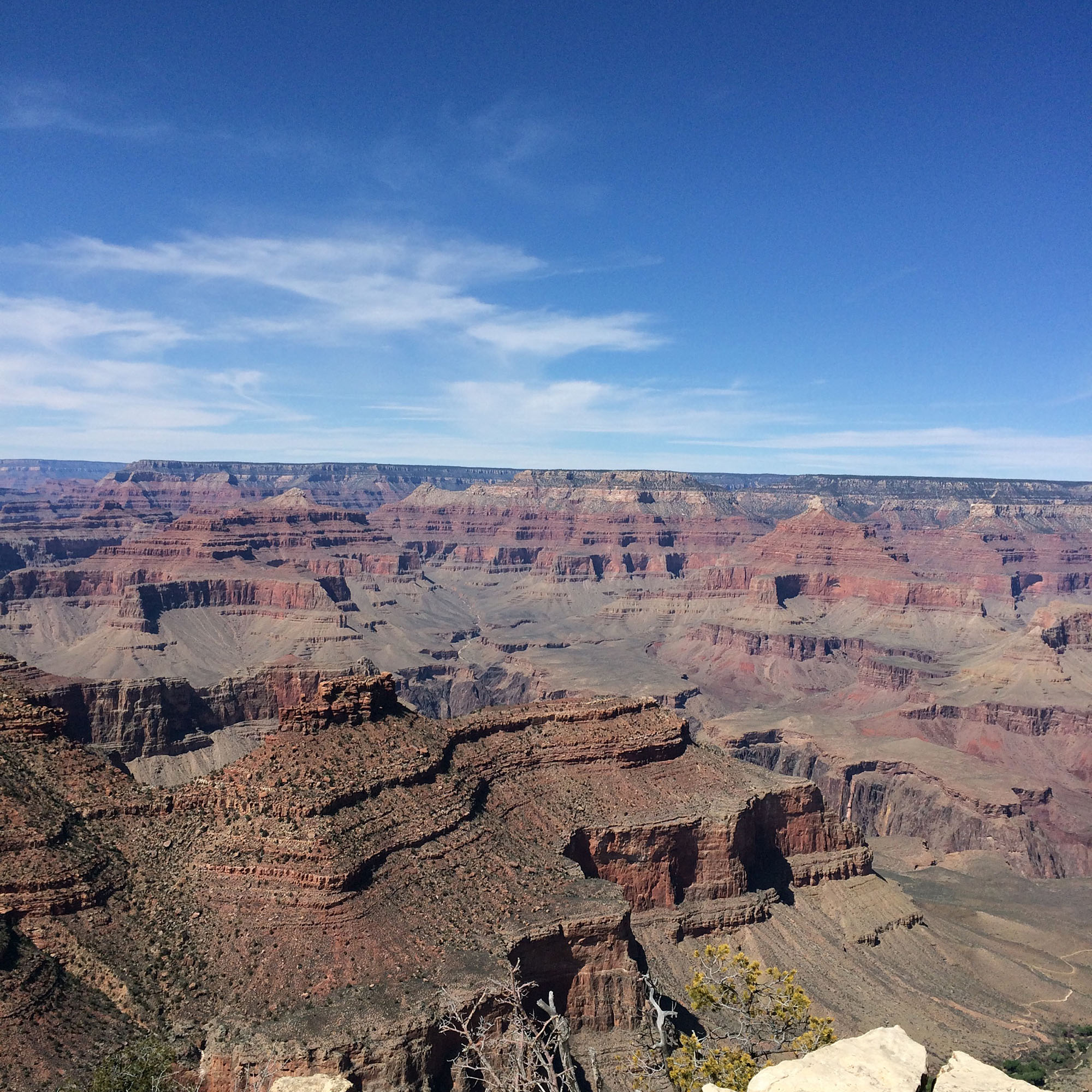 IMG_4428 grand canyon rött bergx