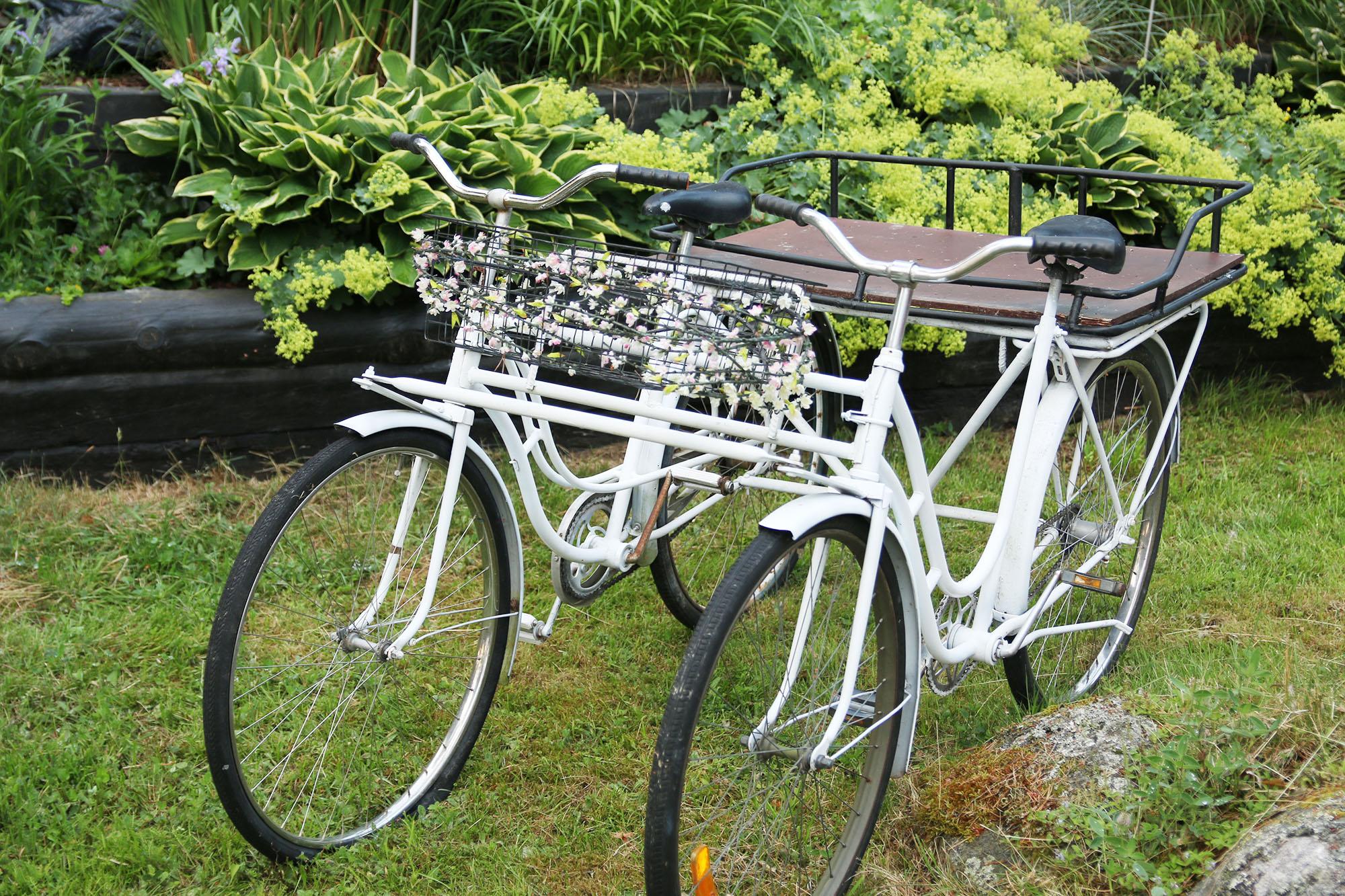 IMG_4113 cykel x