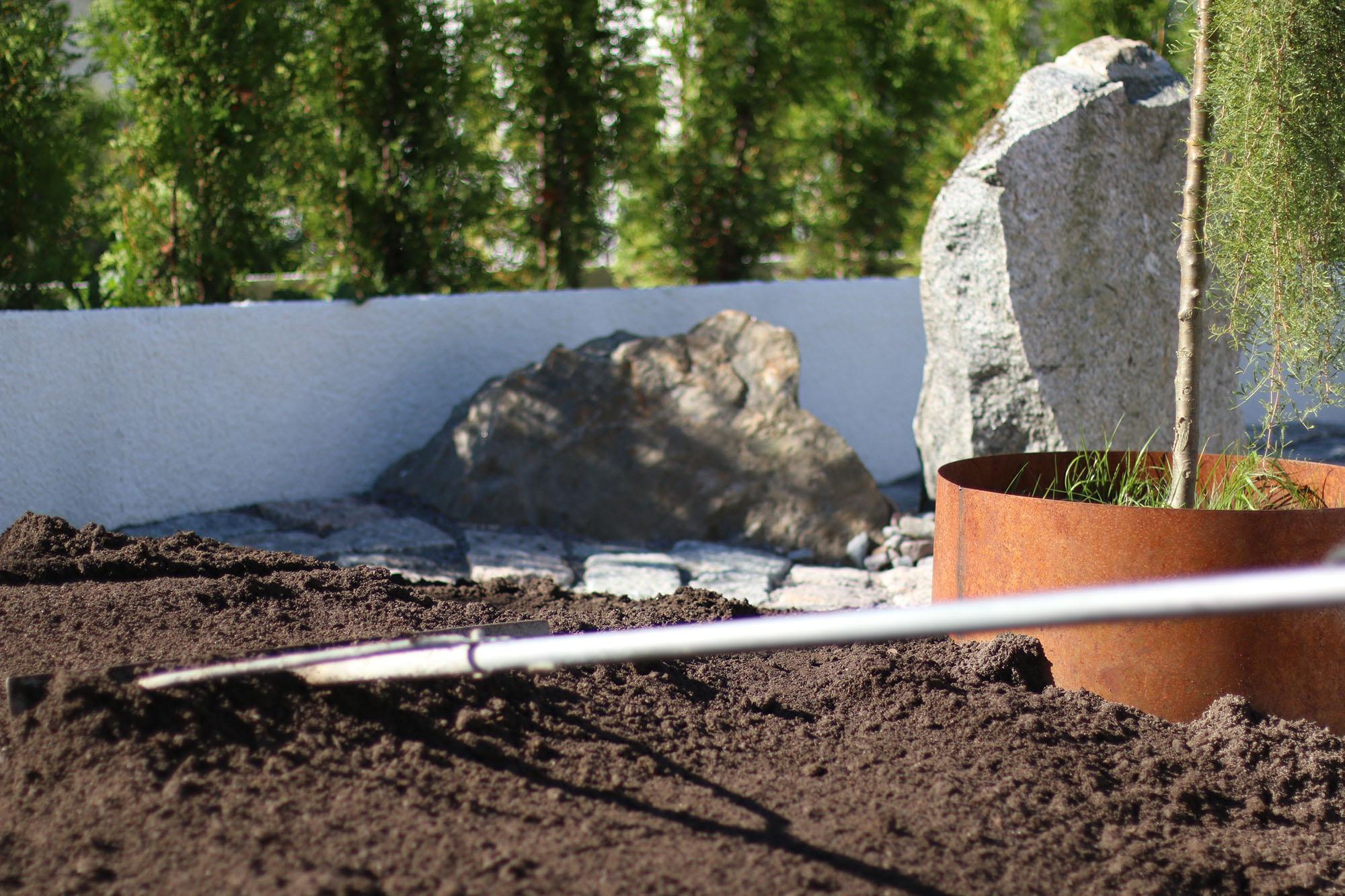 img_6405-plantering
