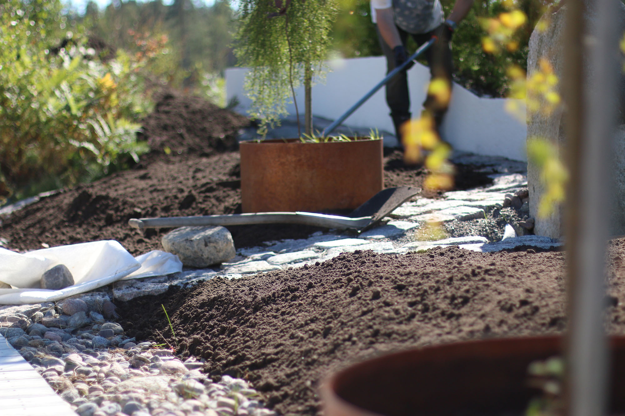 img_6408-plantering