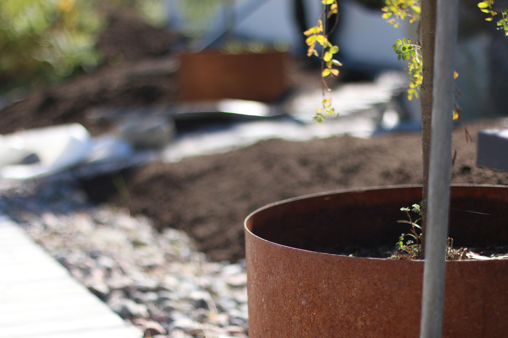 img_6409-plantering