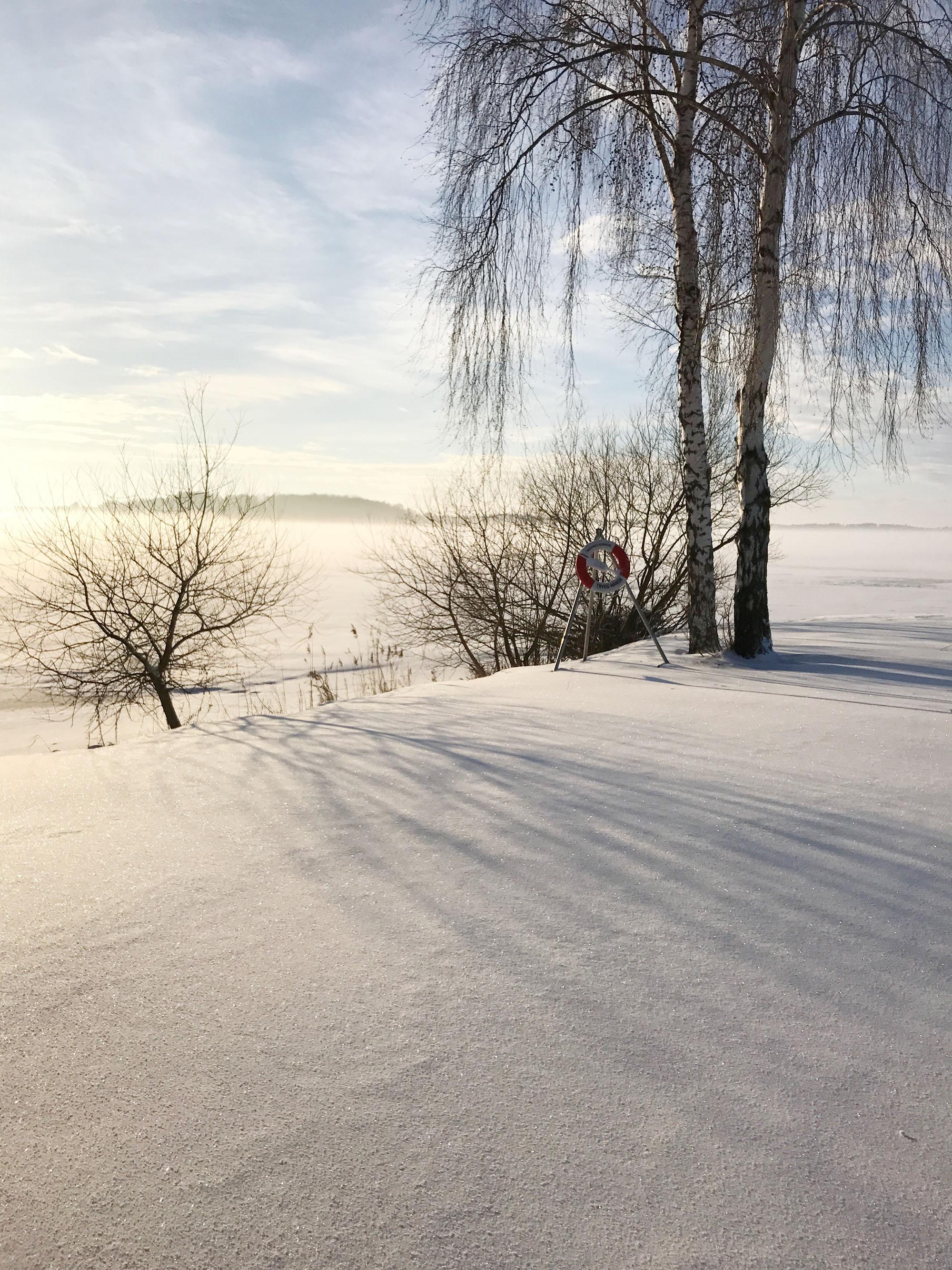 img_7751-vinterpicknick