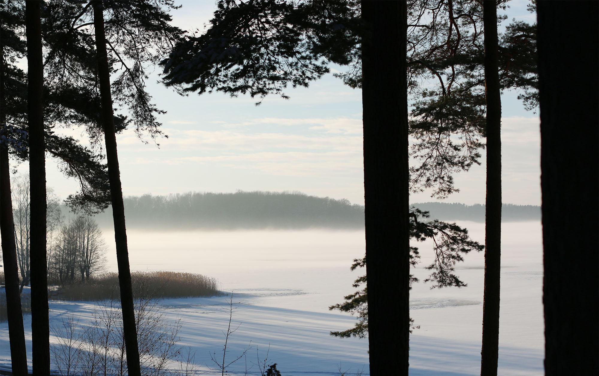 img_8135-vinterpicknick