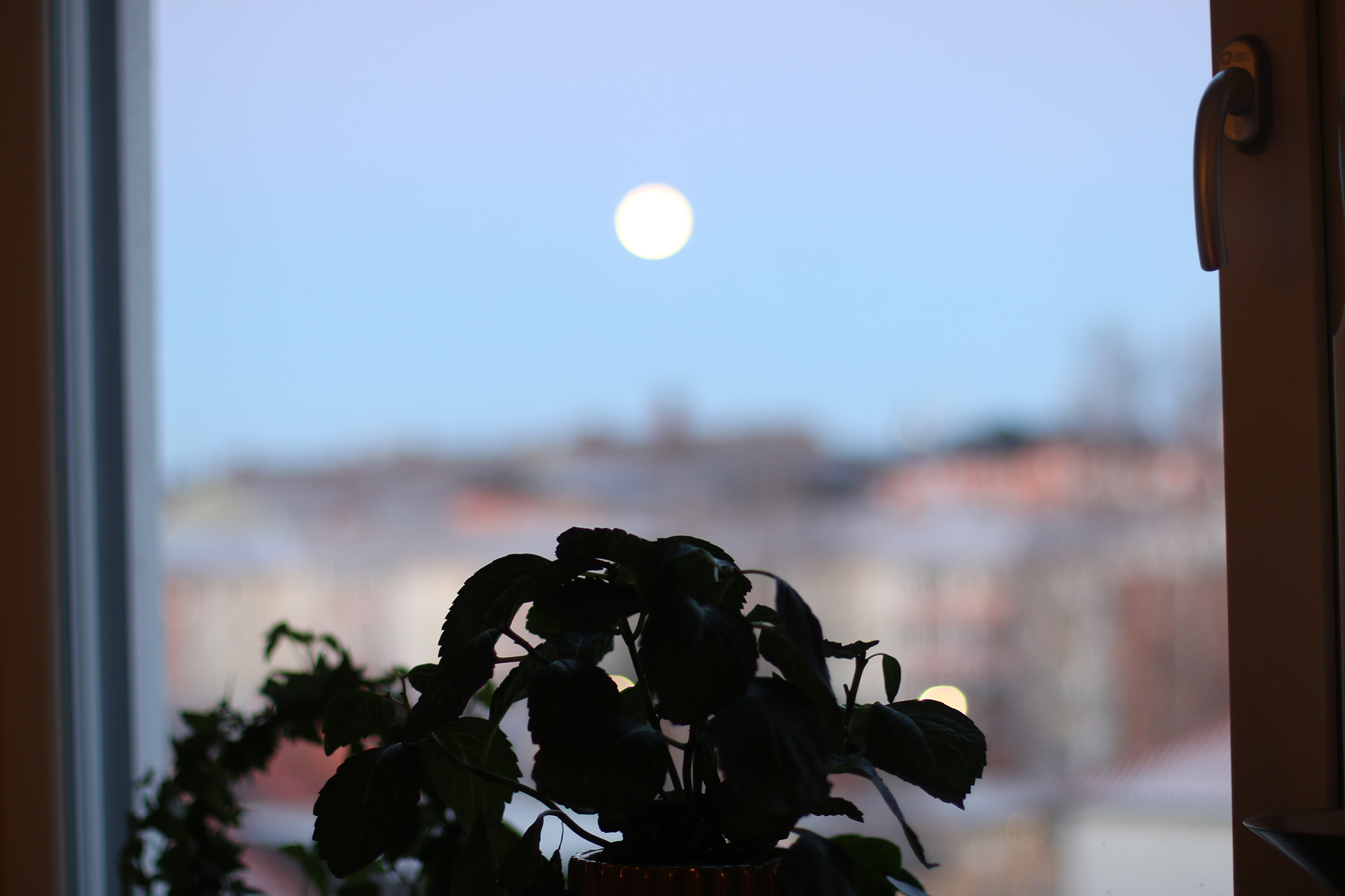 IMG_8507 fullmåne