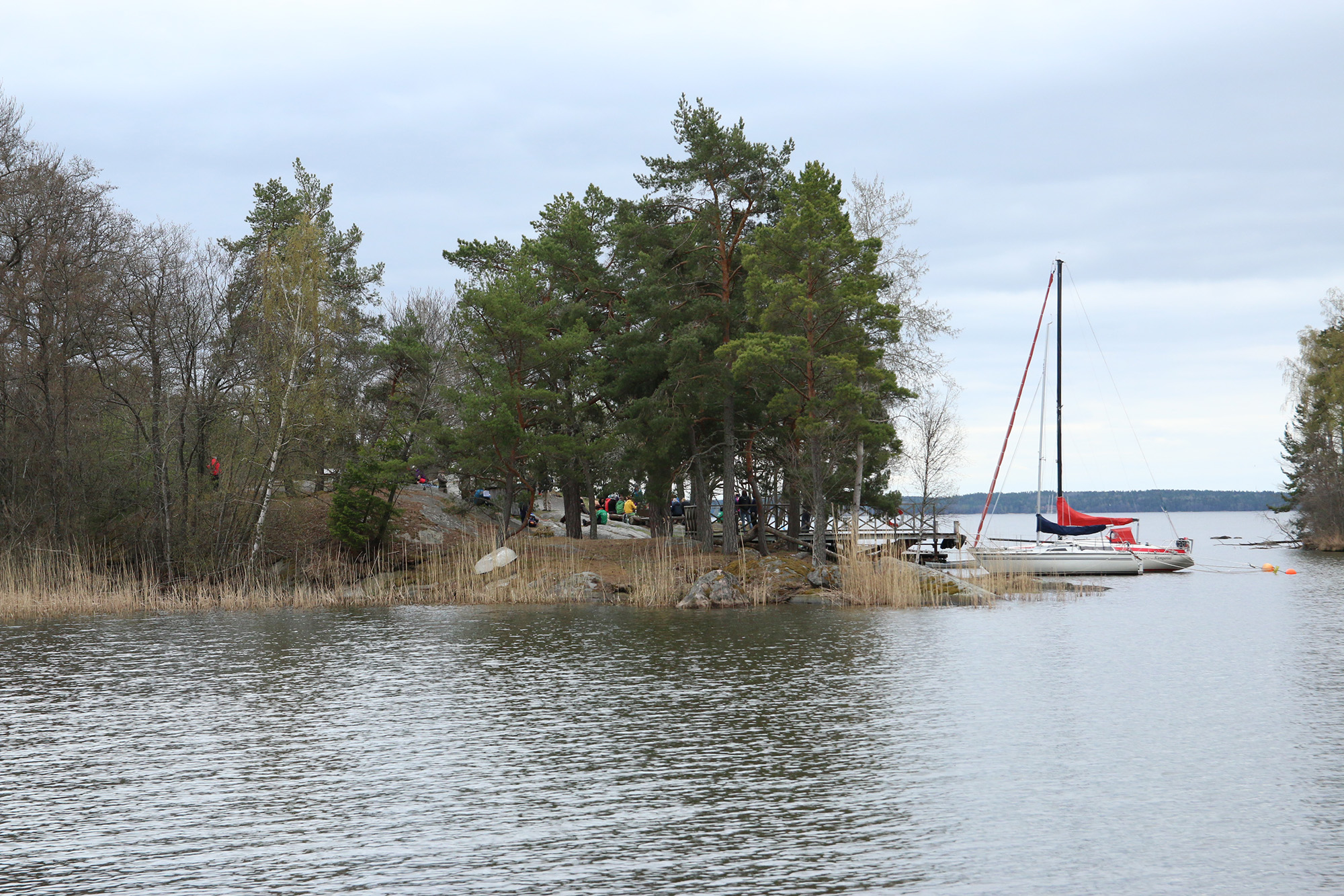 IMG_9503 ängsö naturreservat