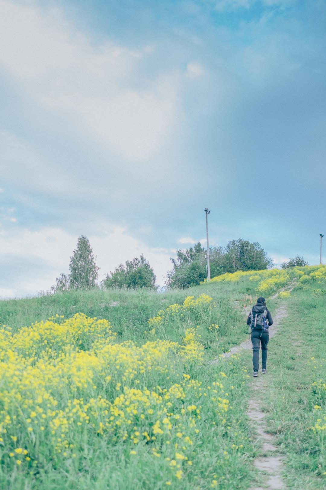 170619_hus30_fotograf_ulrica_hallen_fujifilm_xt2_xf23mm_vandringsbloggen_kvinnligaaventyrare_vandringstraff-9951