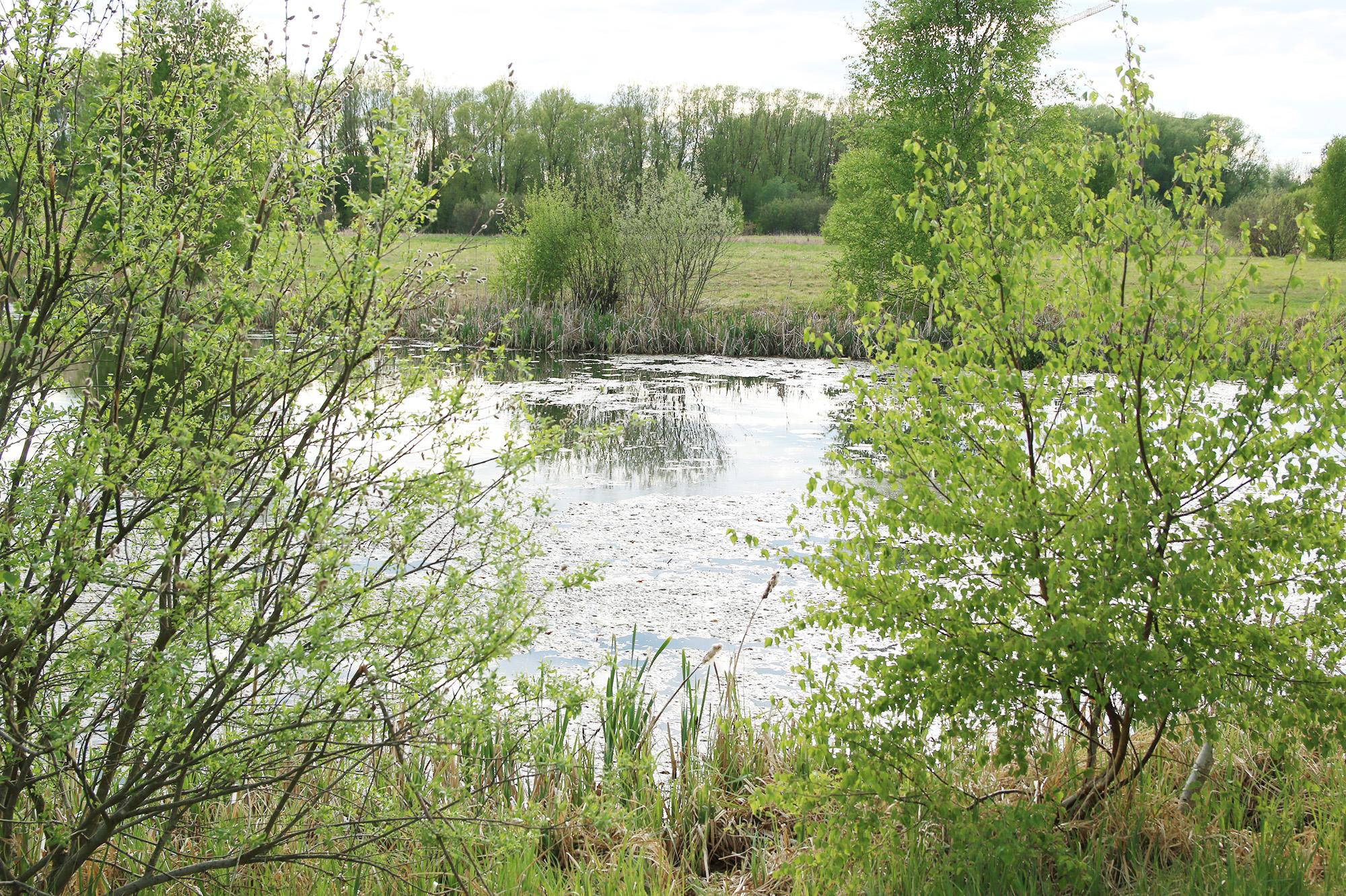 IMG_9695 vattenparken
