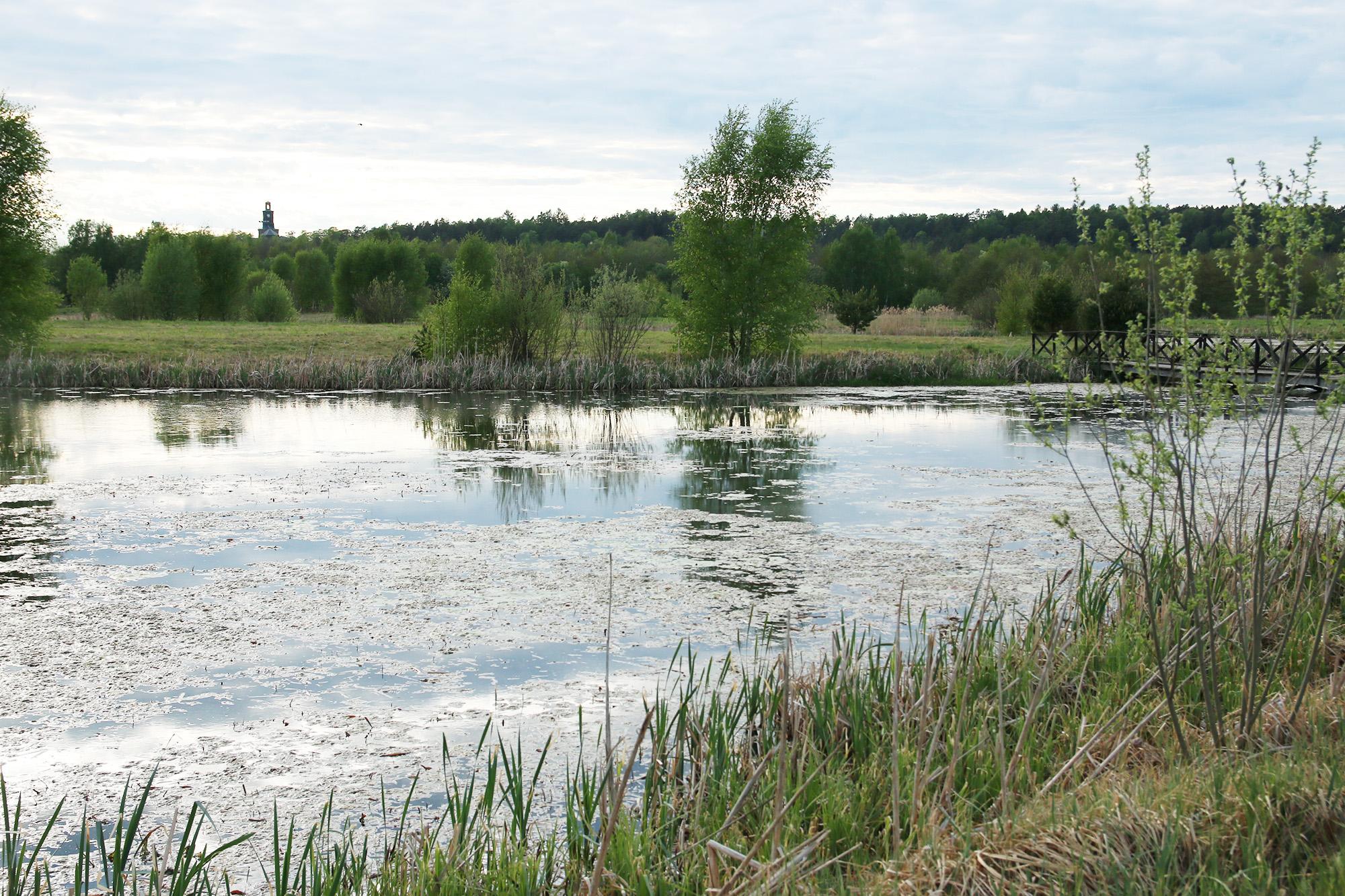 IMG_9699 vattenparken