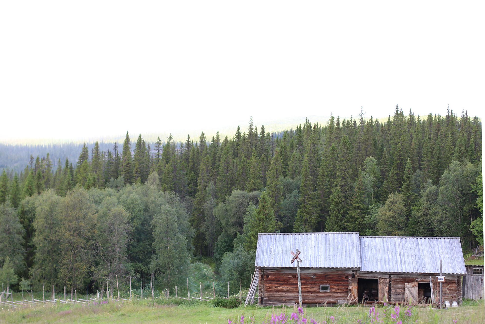 Fröå gruva i Åre