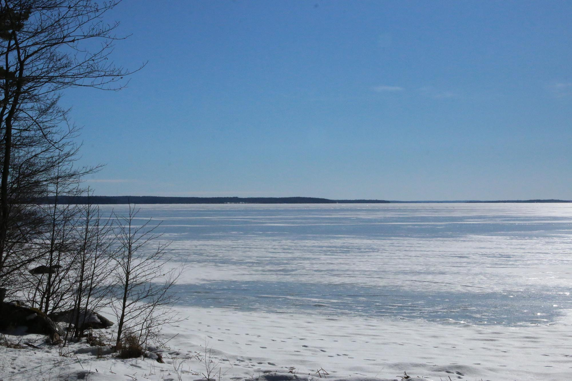 Med utsikt över Mälaren i Härjarö naturreservat