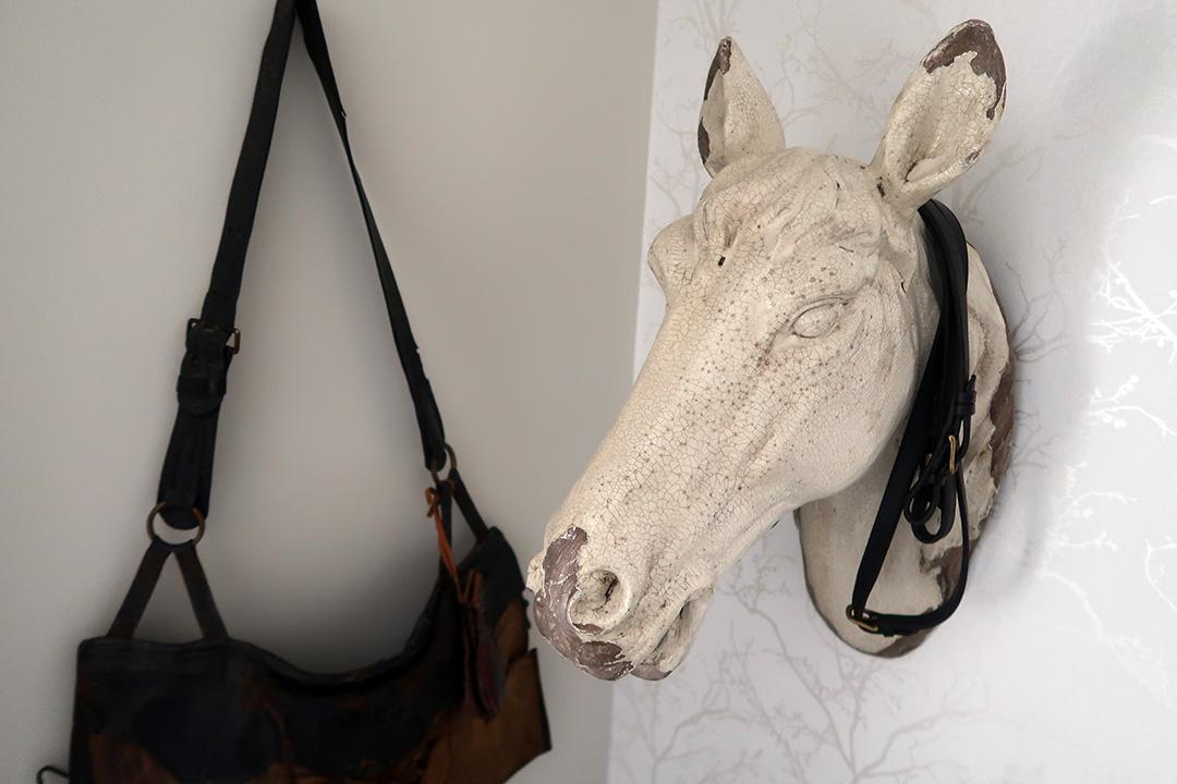 Ett hästhuvud på väggen