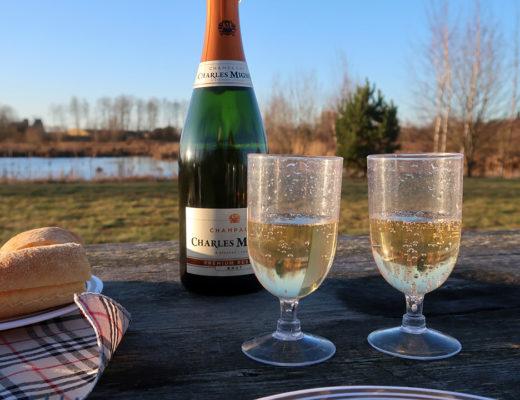 Nyårsaftonspicknick som började med champagne