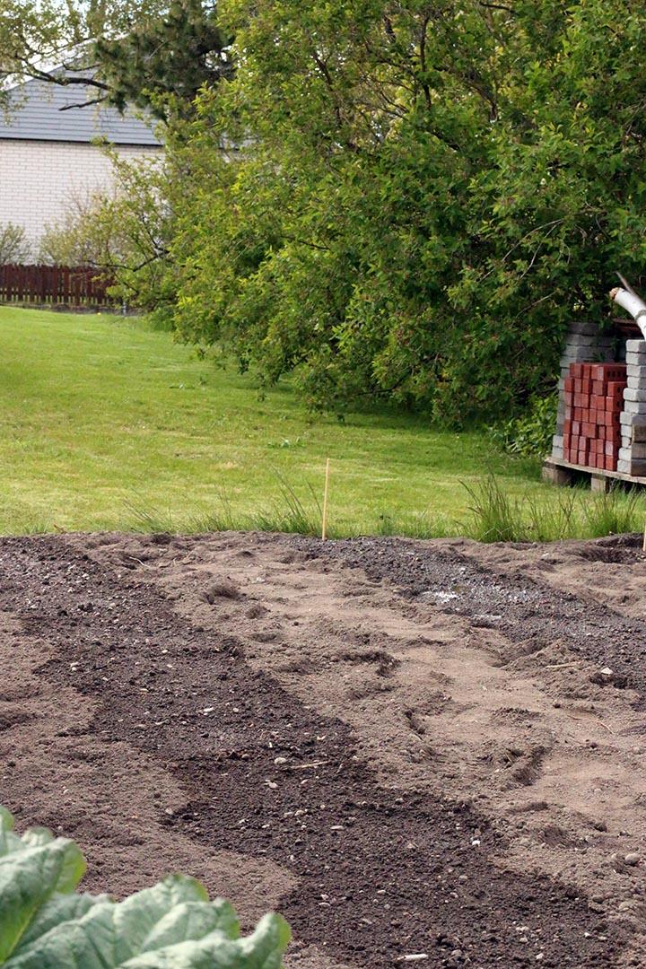 Att köra jordfräs och sätta potatis ingick i gårdagens trädgårdsrally.