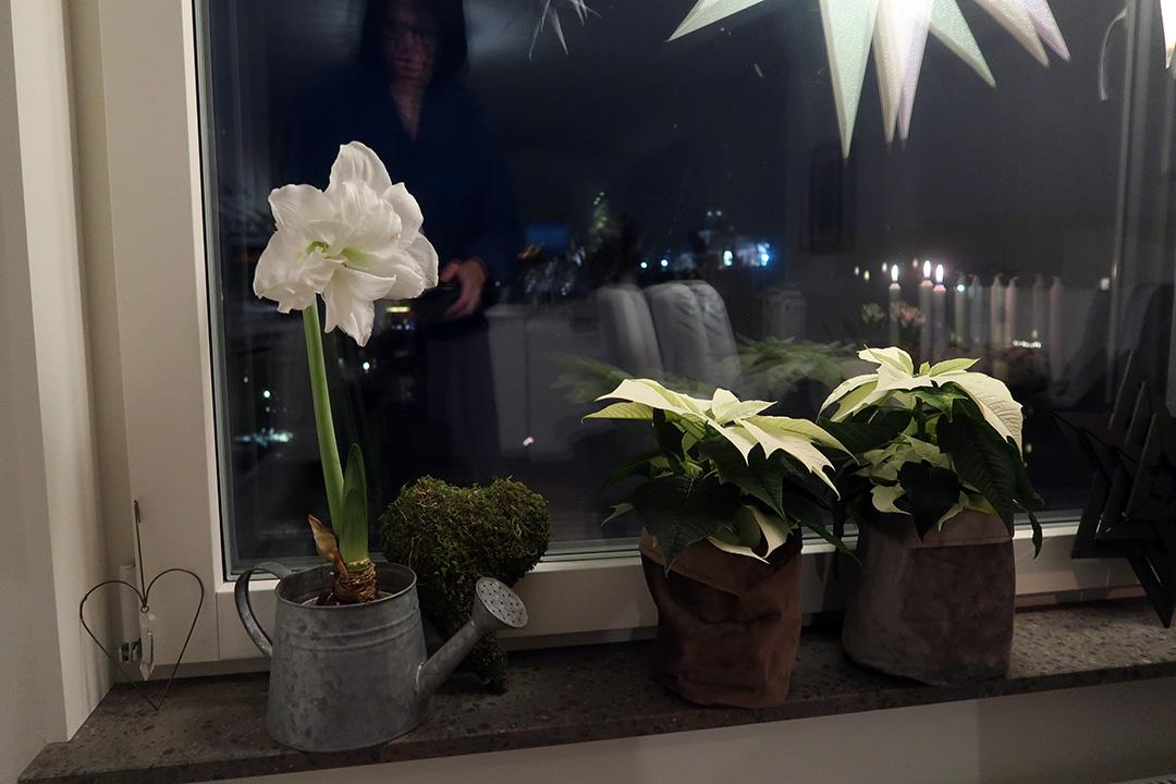 Vinterpynt i köksfönstret
