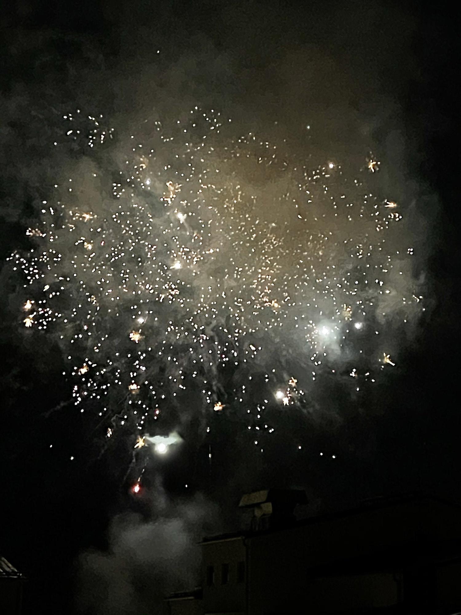 Avslutade vår nyårsaftonskväll med att titta på raketer.