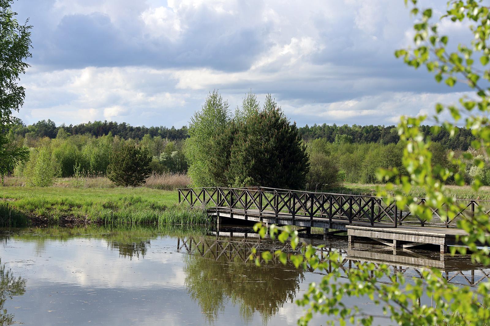 Träbron i Vattenparken är ett tacksamt fotoobjekt