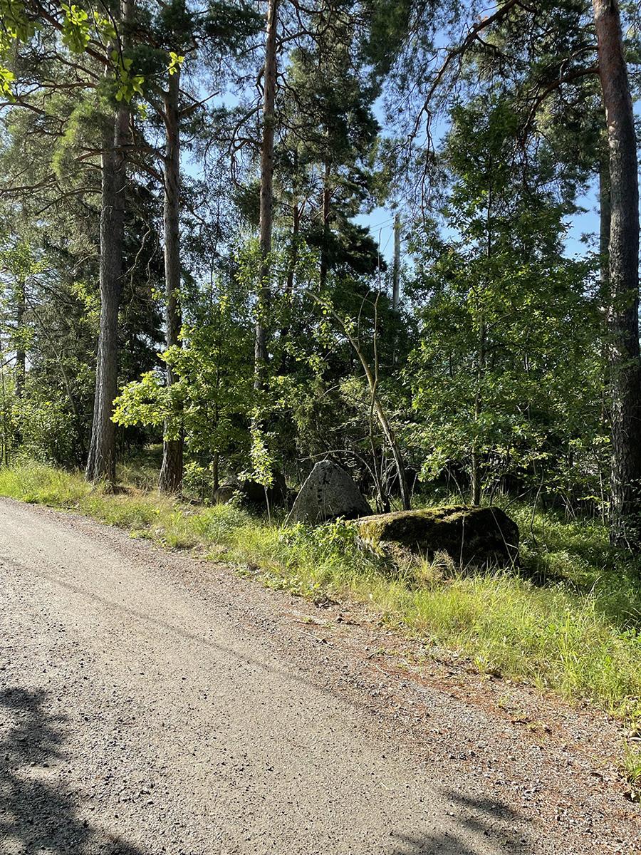 Löptur på grusiga skogsvägar